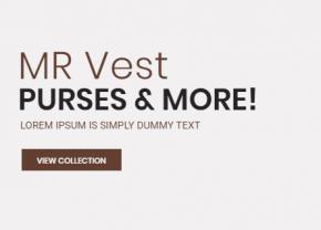 Mr Vest